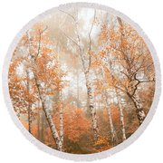 Foggy Autumn Aspens Round Beach Towel