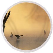 Foggy Landing Round Beach Towel by Elizabeth Winter