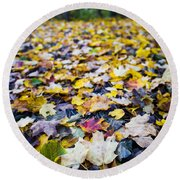 Round Beach Towel featuring the photograph Foliage by Sebastian Musial
