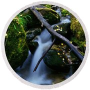 Round Beach Towel featuring the photograph Follow Me by Jeremy Rhoades