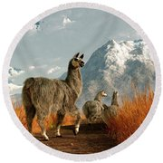 Follow The Llama Round Beach Towel