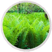 Forest Ferns   Round Beach Towel