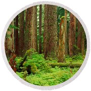 Forest Floor Olympic National Park Wa Round Beach Towel