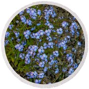 Forget-me-nots Round Beach Towel