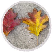 Four Autumn Leaves Round Beach Towel