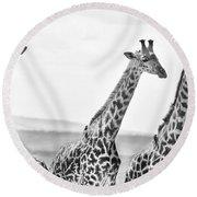 Four Giraffes Round Beach Towel