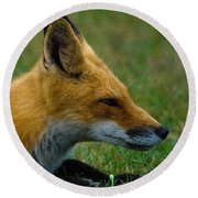 Fox 2 Round Beach Towel