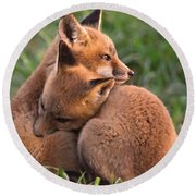 Fox Cubs Cuddle Round Beach Towel
