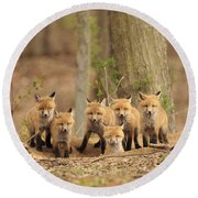 Fox Family Portrait Round Beach Towel by Everet Regal