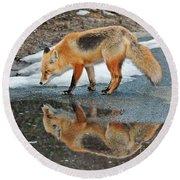 Fox Reflection Round Beach Towel