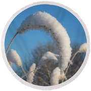 Foxtail Grass With Snow  Round Beach Towel