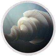 Fractal Seashell  Round Beach Towel