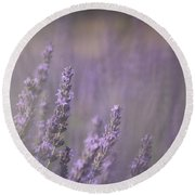 Round Beach Towel featuring the photograph Fragrance by Lynn Sprowl
