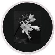 Fragrant Plantain Lily Round Beach Towel