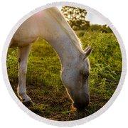 Freckles Pferd Round Beach Towel