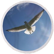 Freedom Flight Round Beach Towel