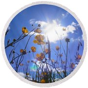 Freedom Of The Meadow Round Beach Towel