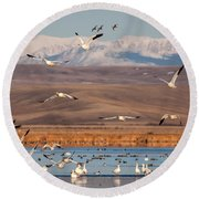 Round Beach Towel featuring the photograph Freeze Out Lake Morning by Jack Bell