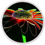 Friday Night Daisy Round Beach Towel