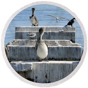 Pelican Friends Round Beach Towel
