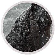 Friesian Snow Round Beach Towel