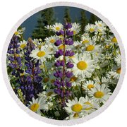 Round Beach Towel featuring the photograph Frisco Flowers by Lynn Bauer