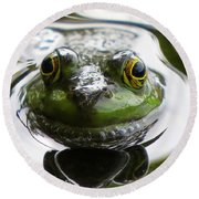 Round Beach Towel featuring the photograph Frog Kiss by Dianne Cowen