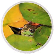 Frog Pond 3 Round Beach Towel