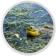 Frog Song Round Beach Towel
