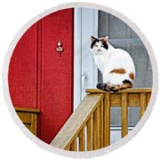 Front Porch Cat Round Beach Towel