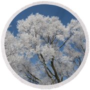Frost On The Elms Round Beach Towel