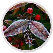 Frosted Nandina Leaves Round Beach Towel by Kathryn Meyer
