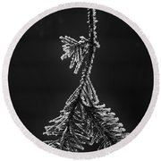 Frosted Pine Branch Round Beach Towel