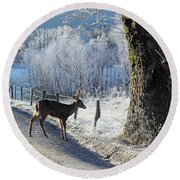 Frosty Cades Cove II Round Beach Towel