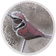 Round Beach Towel featuring the photograph Frosty Cardinal by Patti Deters