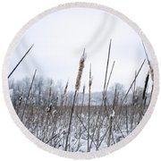 Frosty Cattails Round Beach Towel