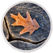 Round Beach Towel featuring the photograph Frosty Leaf On Tree Trunk by Gary Slawsky