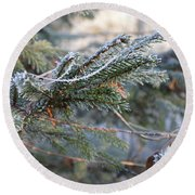 Round Beach Towel featuring the photograph Frozen Fir Branch  by Felicia Tica