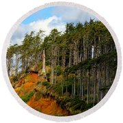 Round Beach Towel featuring the photograph Frozen In Time by Jeanette C Landstrom