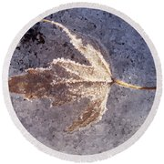 Frozen Leaf Round Beach Towel by Richard Bryce and Family