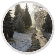 Round Beach Towel featuring the painting Frozen Light by Felicia Tica