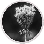 Round Beach Towel featuring the photograph Frozen Queen by Melanie Lankford Photography