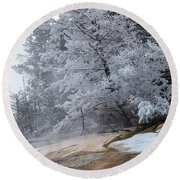 Round Beach Towel featuring the photograph Frozen Tree by Michael Chatt