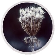 Round Beach Towel featuring the photograph Frozen Wisps by Melanie Lankford Photography