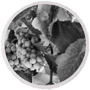 Fruit -grapes In Black And White - Luther Fine Art Round Beach Towel