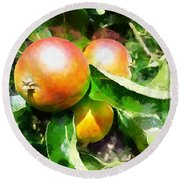 Fugly Manor Apples Round Beach Towel