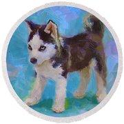 Alaskan Husky Sled Dog Puppy Round Beach Towel