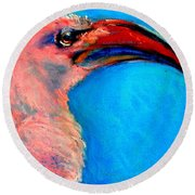 Funky Red-billed Hornbill Art Print Round Beach Towel
