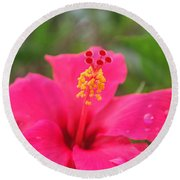 Round Beach Towel featuring the photograph Garden Rains by Miguel Winterpacht