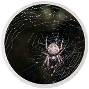 Round Beach Towel featuring the photograph Garden Spider by Matt Malloy